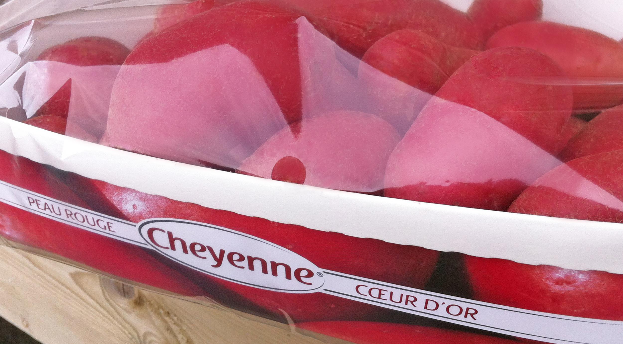 Barquettes Cheyenne®