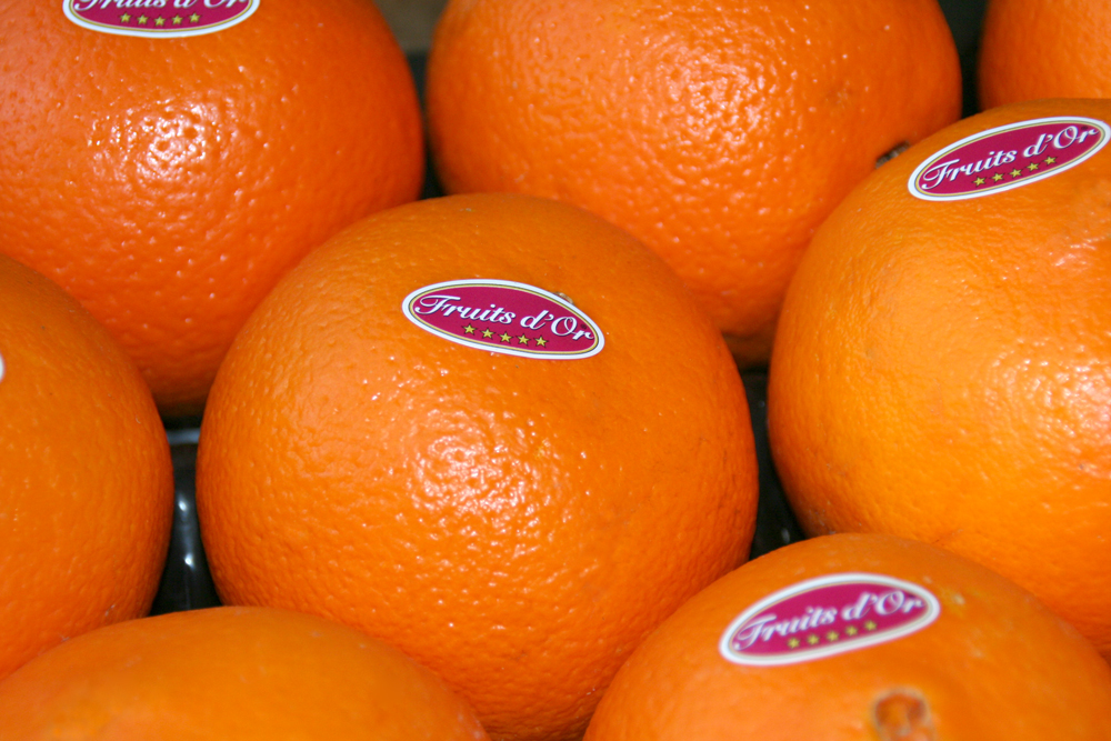 Oranges extra douces