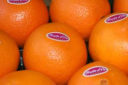 Oranges extra douces