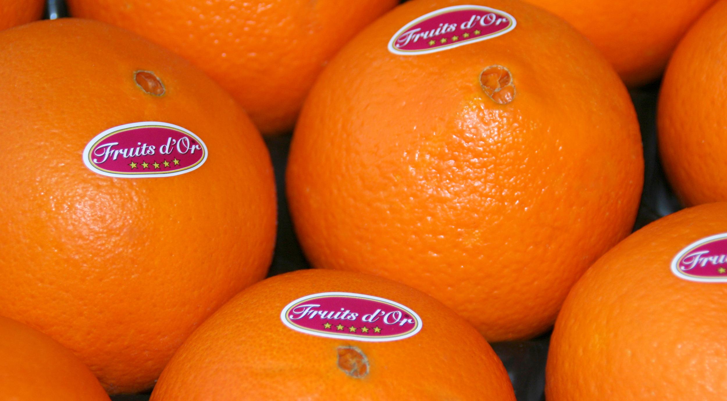Oranges Fruits d'Or®