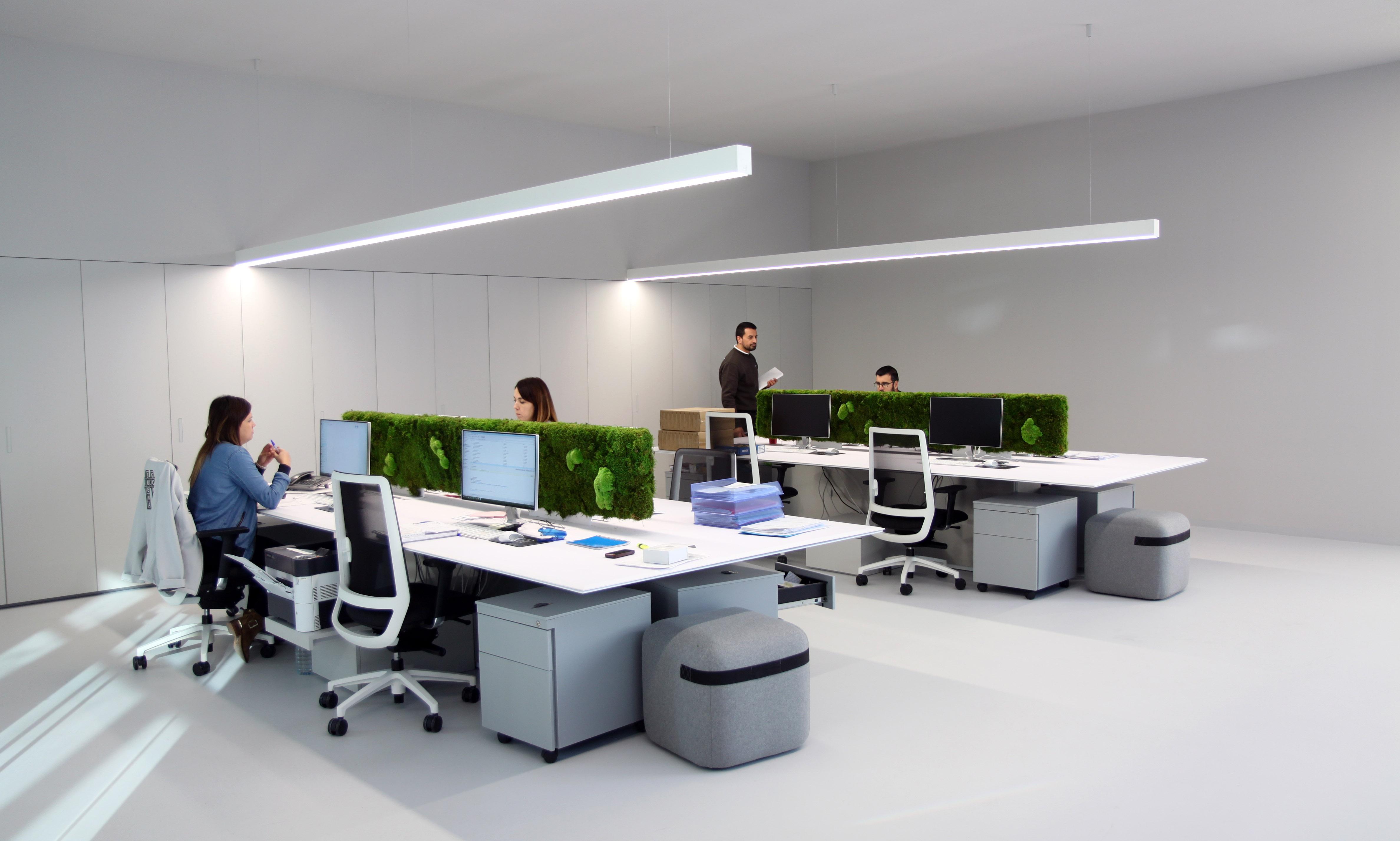 Gomarco | Oficinas Corporativas