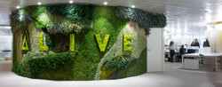 Alive | Advertising Office