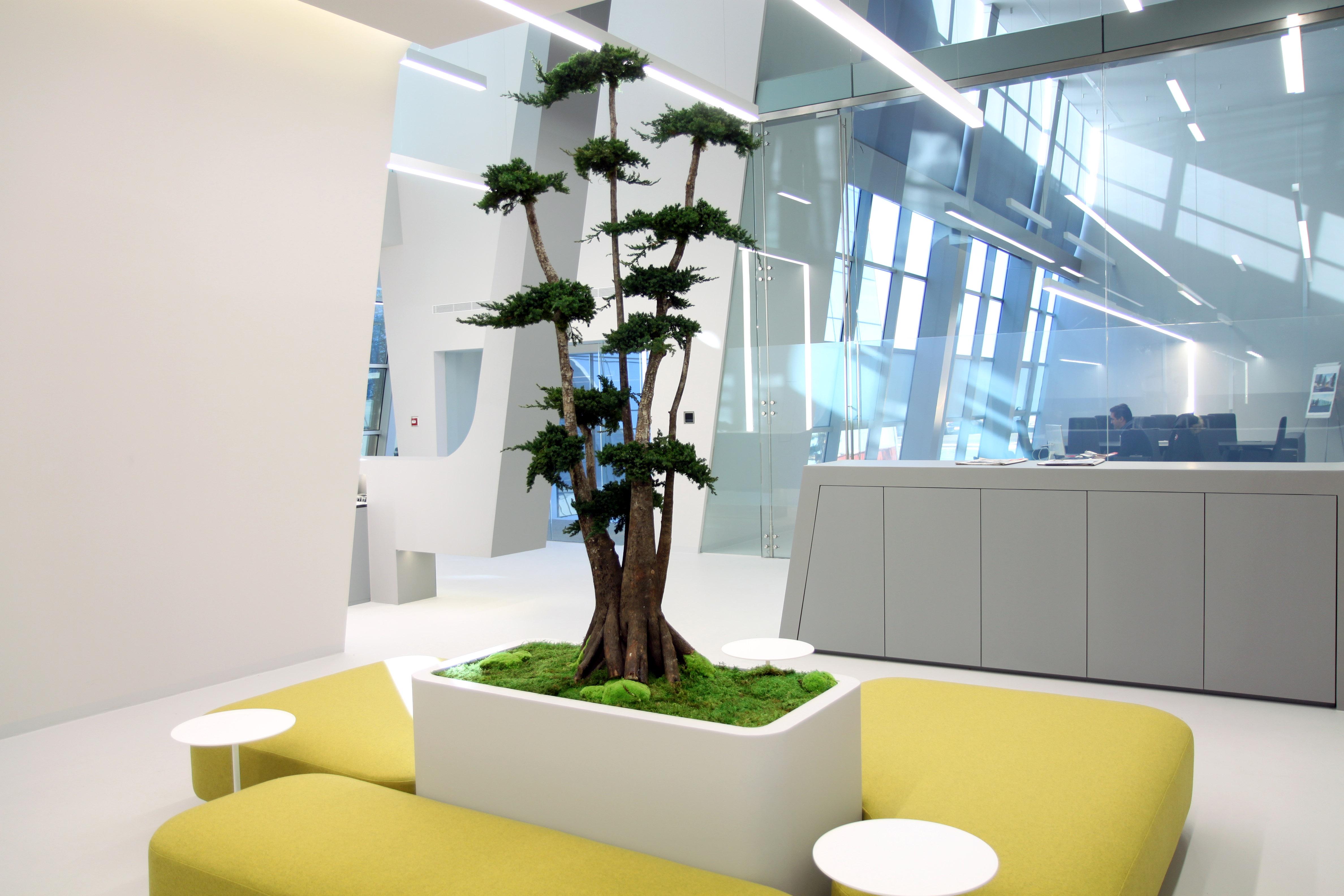 Gomarco | Oficinas Corporatiect: