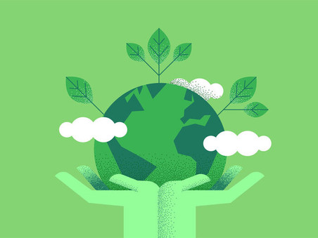 How Green Cleaning Can Benefit Your Business