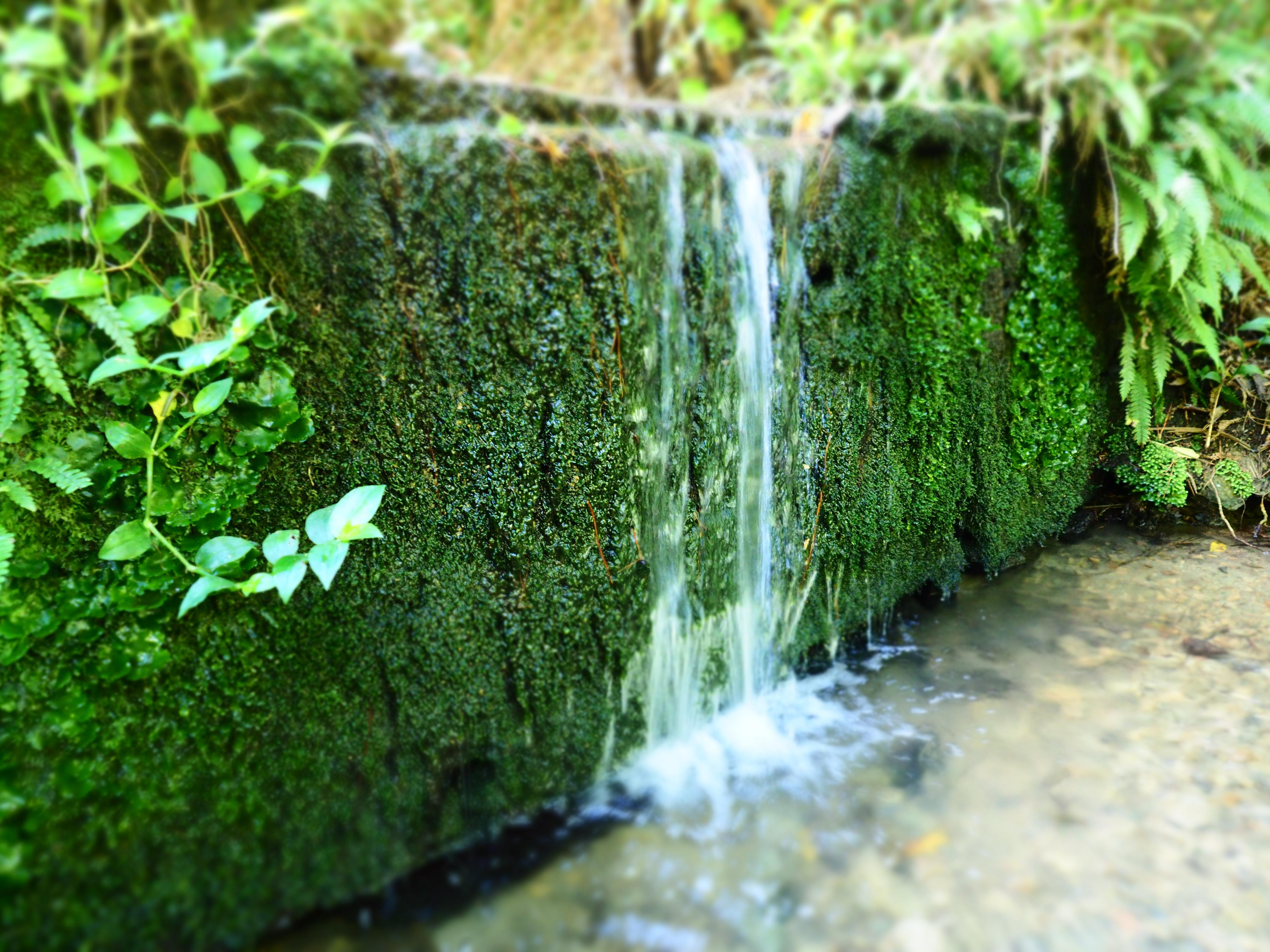 """Waterfall"""