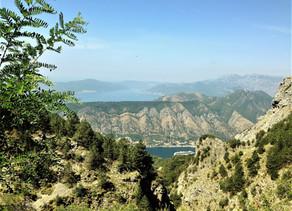 Montenegro Roadtrippin'
