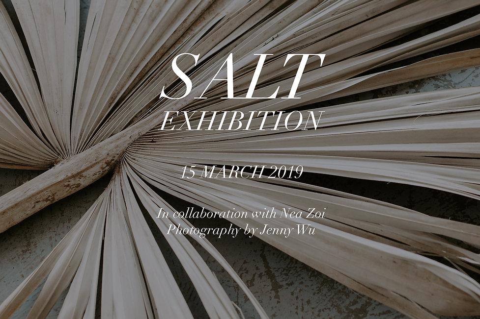SALT exhibition palm.jpg