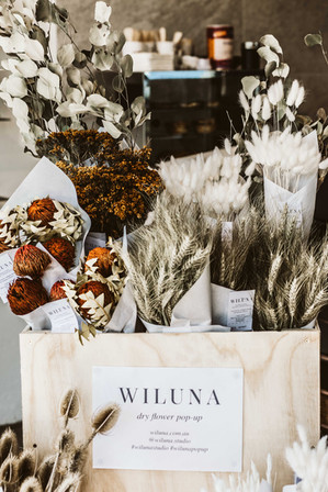 Wiluna Social Media (6 of 36).jpg