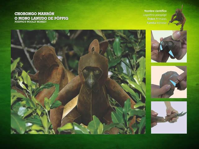 Chorongo marrón
