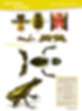 Arlequin Instrucc.jpg