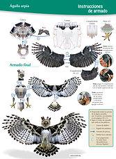 Aguila arpia Instrucc.jpg
