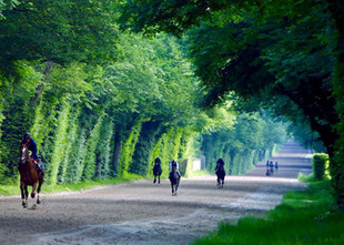 WEEK-END à CHANTILLY !!