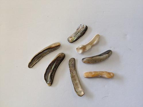 Abalone Rims