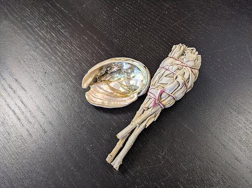 Mini Abalone Shell