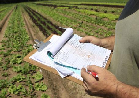 Endividamento do produtor rural - a consequência do crescimento do Agronegócio