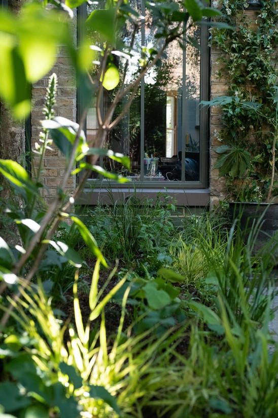 Clapham Town garden.
