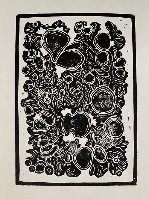 Lichen (A4 Block Print)