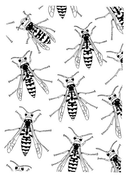 wasps-edited.png