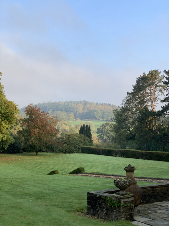 A lucky client's garden views.