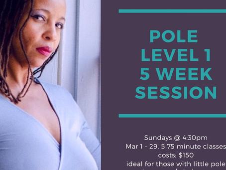 Pole Level 1 Session