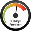 30Mbps Speed DialSM.jpg