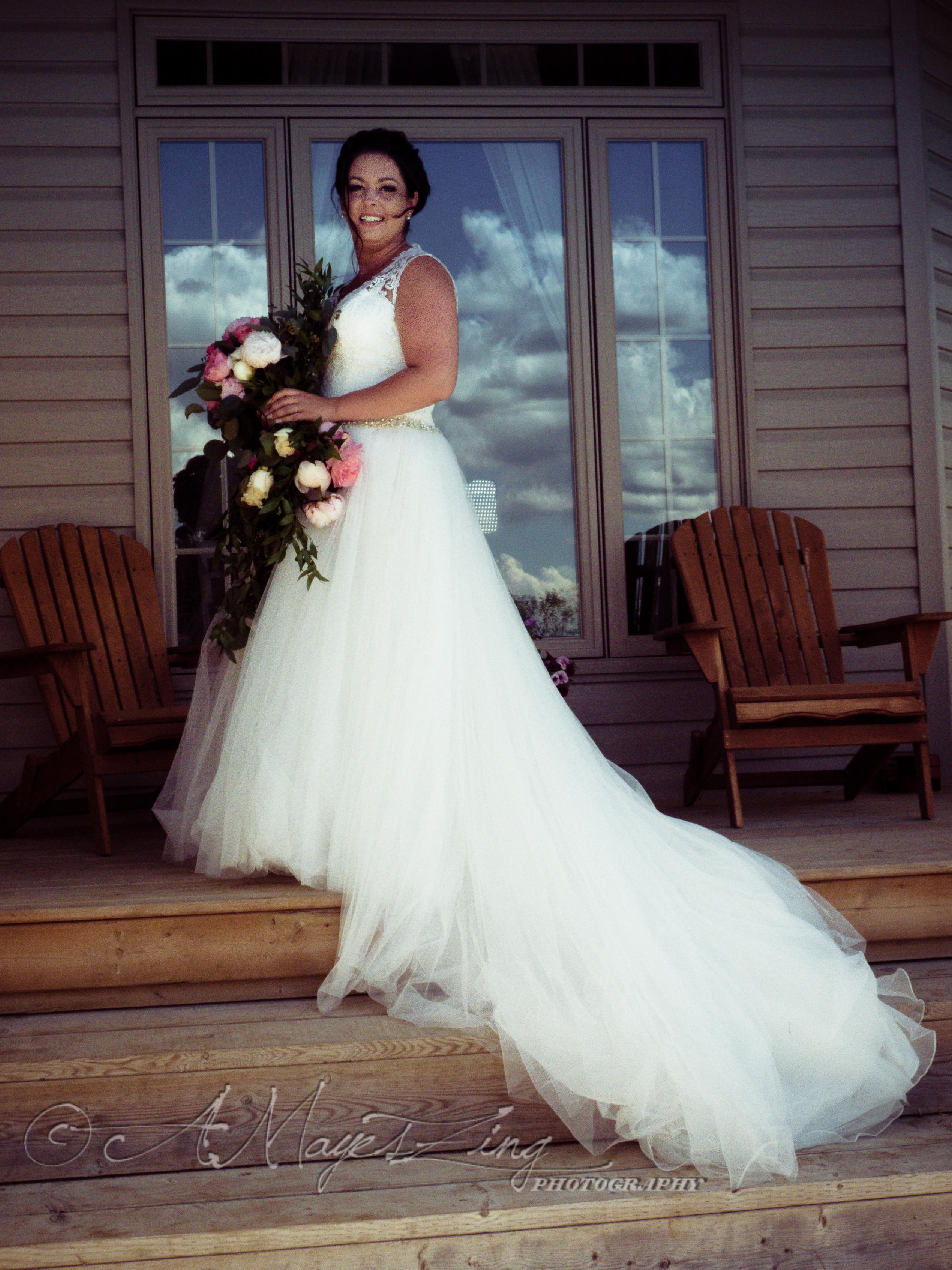 WEDDINGS / ENGAGEMENT