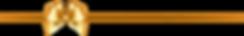 43719-O3V6M2-02.png