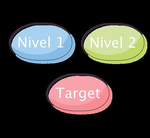 Nivel 1 + Nivel 2 + Target