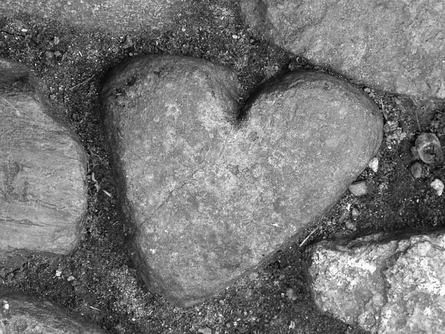 heart-shaped rock in a path