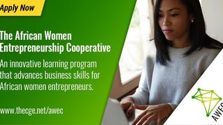 Africa women entrepreneurs: join a 12-month training program
