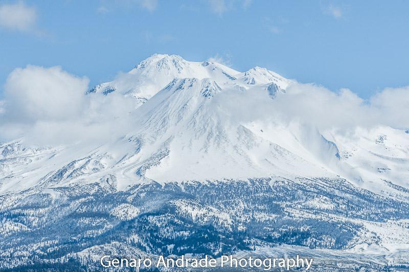 Mt. Shasta 1
