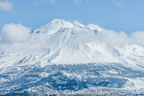 """Mt. Shasta # 1"""