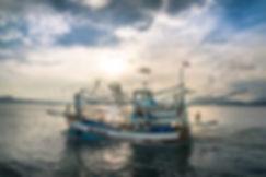 boatlowres.jpg