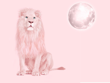Leo New Moon; Self-Care Ritual
