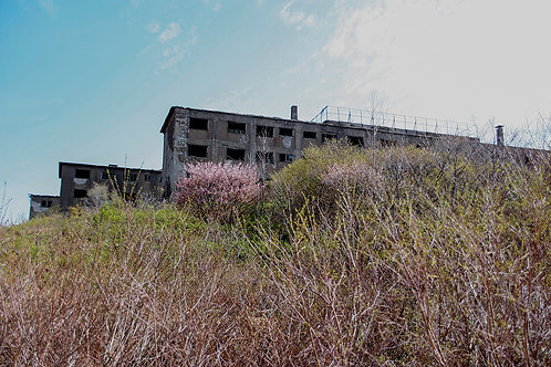 松尾鉱山3882Lサイズ