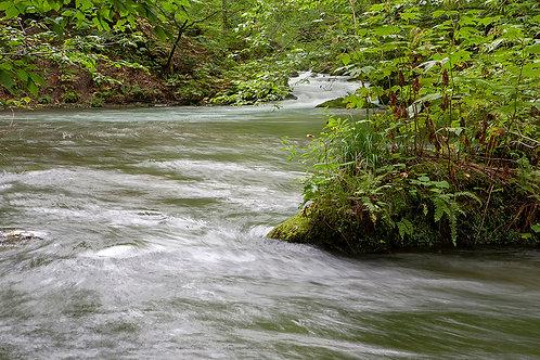 奥入瀬渓流3341Lサイズ