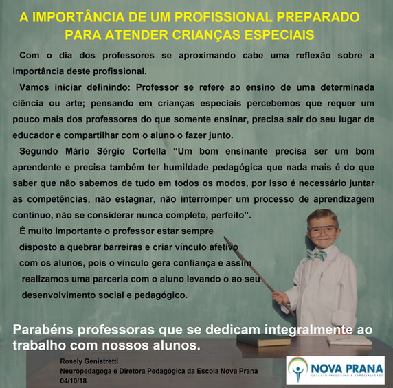 Importância Professor