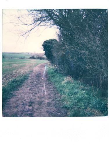 Photo 2 'First Field' - Mar 21'
