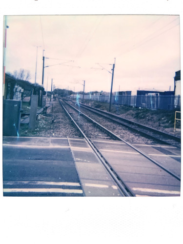 Photo 8 - 'Heading Home' - Mar 21'