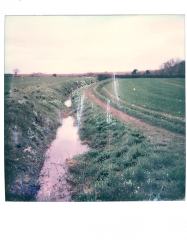 Photo 3 'On Track' - Mar 21'