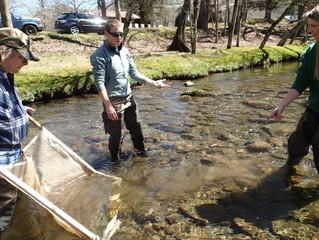 Clean Water Non-Profit Seeks Stream Monitoring Volunteers
