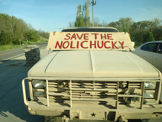 Save the Nolichucky!
