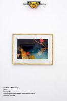Shinya Matsunaga - Aesthetics of bird so
