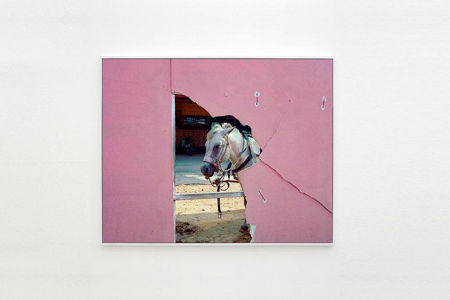 Puvadol Saengvichien - Horse.jpg