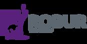 ROBUR_logo_pantone.png
