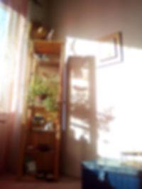 IMG_20180216_151609.jpg