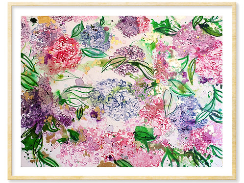 Ralph Waldo Emerson (hydrangeas) - Print