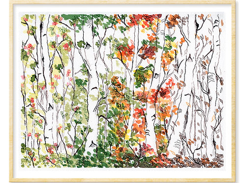 Birch Forest, Four Seasons - Print