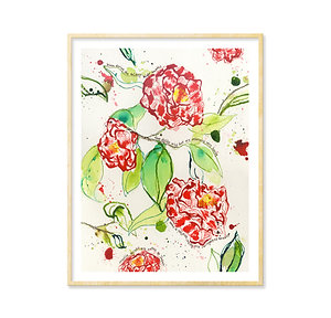 Savannah Camellias - Print