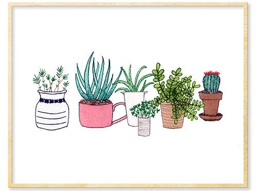 Plants & Pots - Print